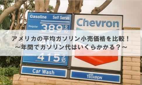 アメリカの平均ガソリン小売価格を比較! ~年間でガソリン代はいくらかかる?~