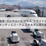 デルタ航空 コンフォートプラス フライトレポート(体験記)│サンディエゴーアムステルダム空の旅